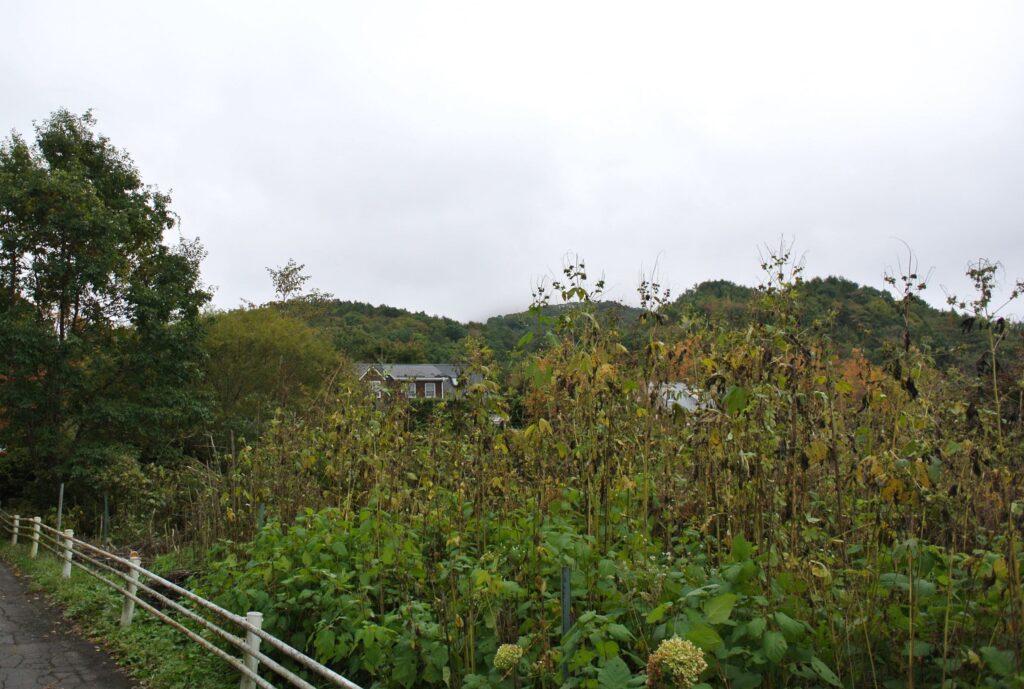 浅間山荘事件